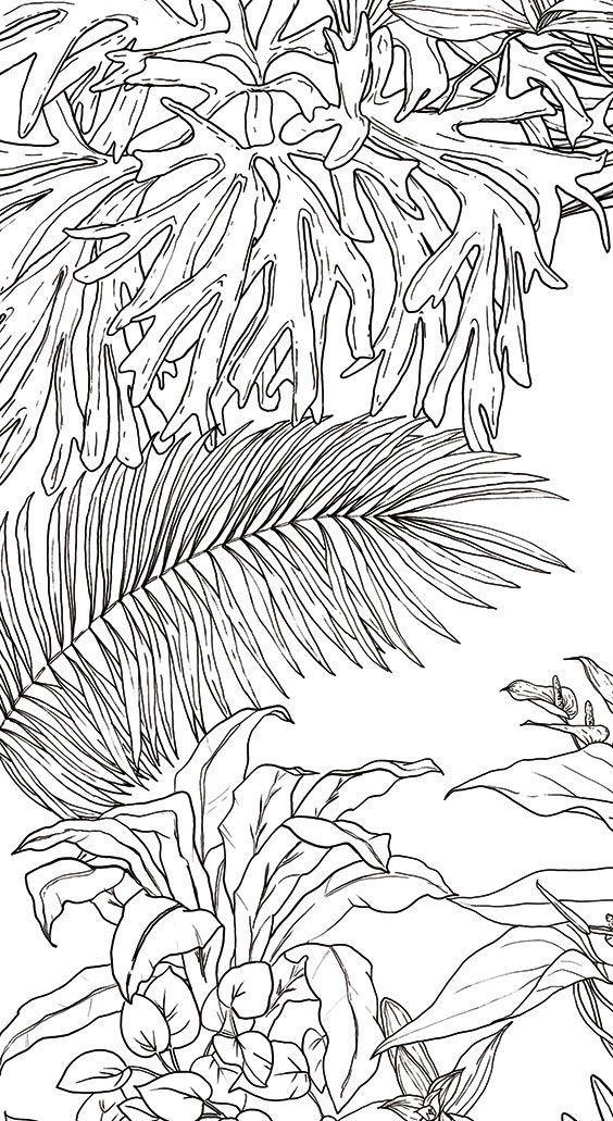 papier peint jungle tropical noir blanc pour ohmywall cr par le duo d 39 artistes caddous. Black Bedroom Furniture Sets. Home Design Ideas