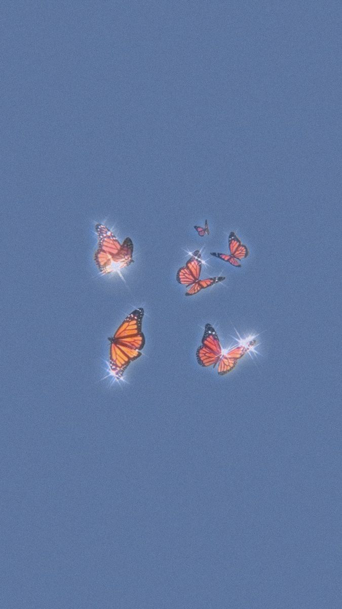 butterfly aesthetic wallpapers iphone wallpaper