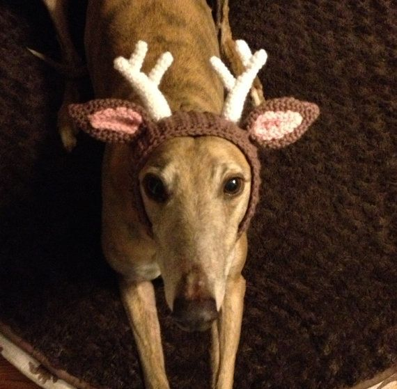 Deer Antlers Made To Order Snood Hat For Dogs By Greybabycrochet 16 50 Crochet Dog Crochet Deer Dog Hat