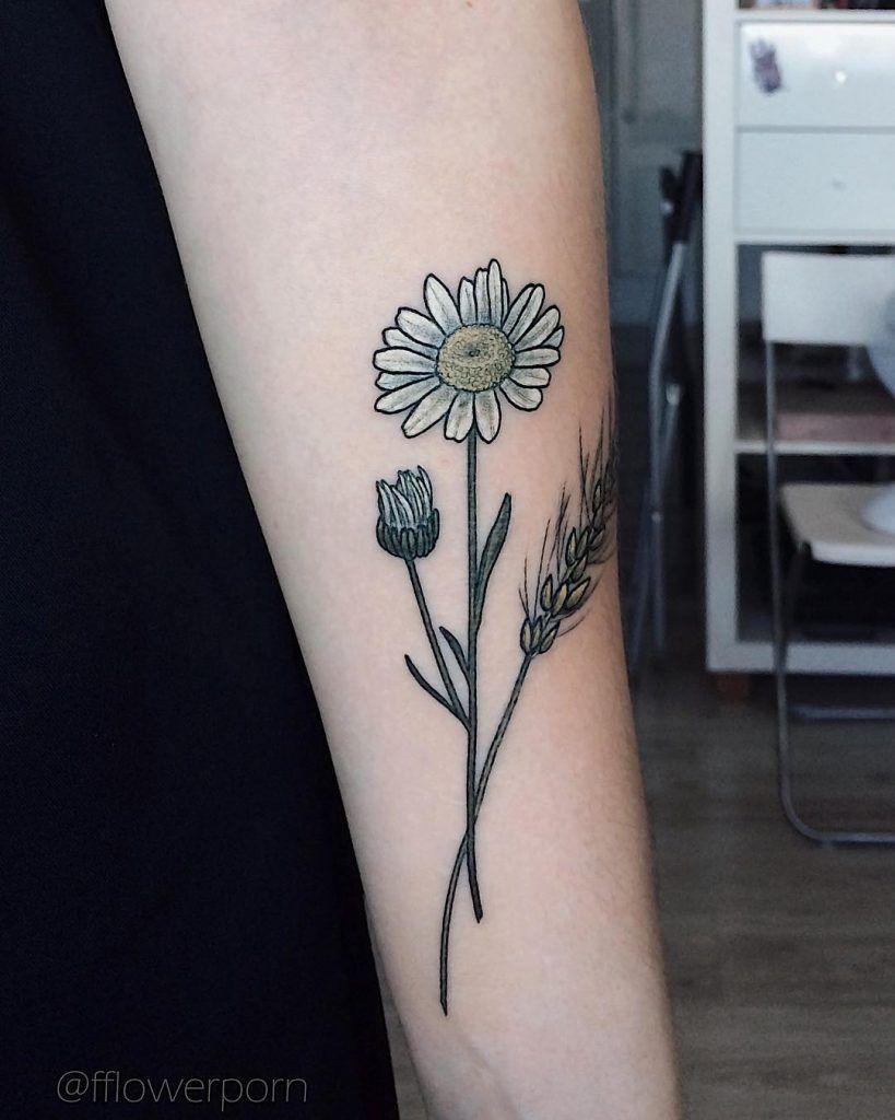Little chamomile tattoo Forearm flower tattoo, Floral