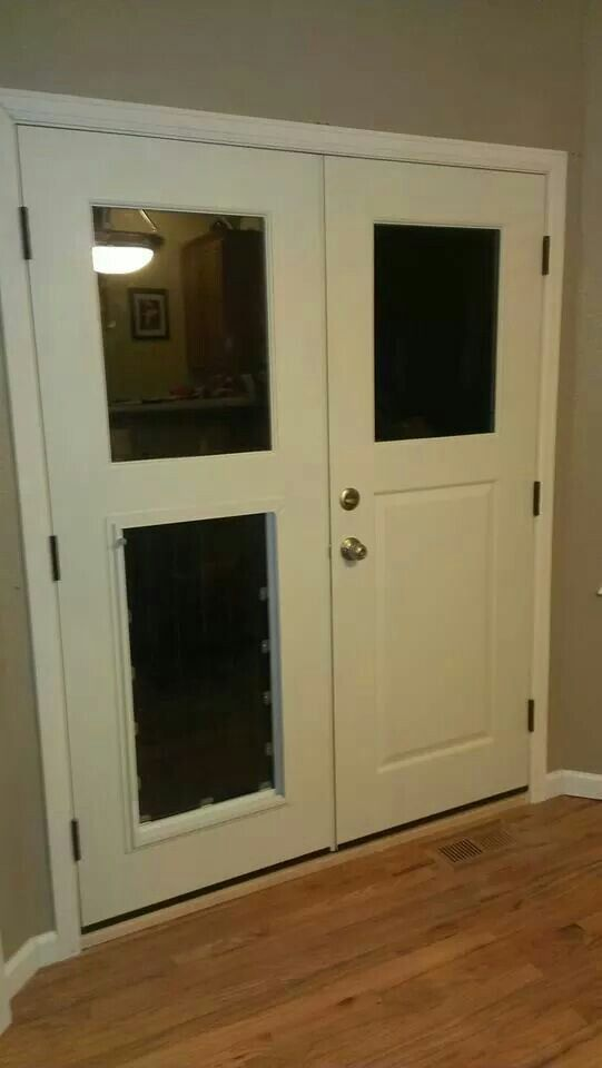 Custom Doggy Door To Fit Our Great Dane Ellie Dog Rooms