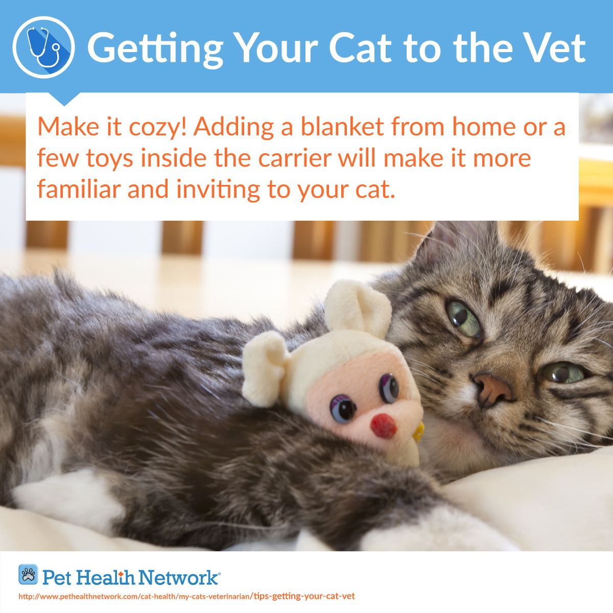 Tips for getting your cat to the veterinarian