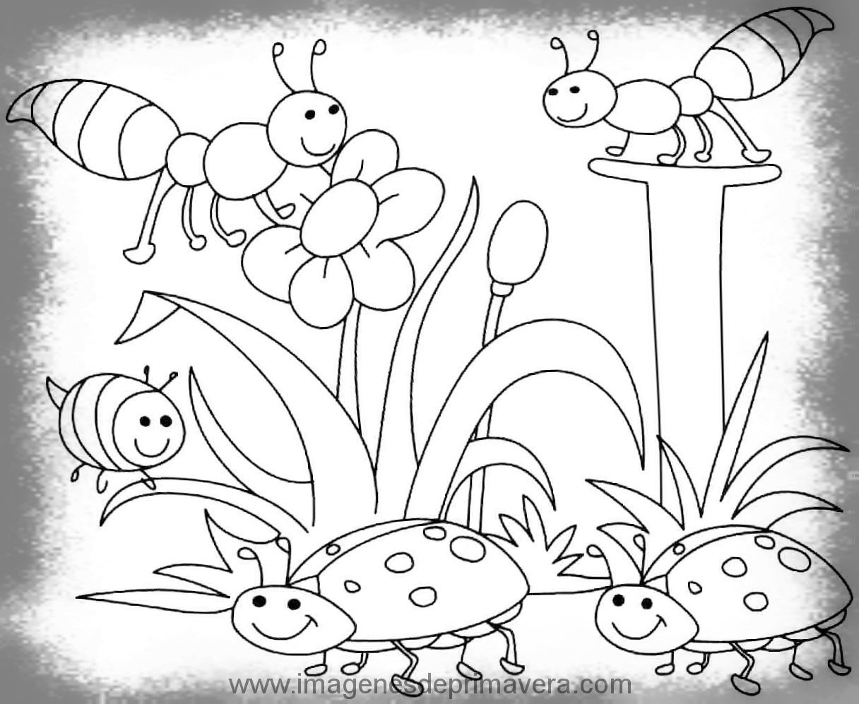 Dibujos De La Primavera Faciles Primavera Dibujos Primavera Y