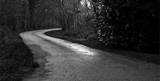 Мысли о вере: Терпеливое предвкушение  Если мы не хитрим, размышляя о скором приходе Спасителя, то, помимо печали о неверующих друзьях, мы испытываем трепетную радость ожидания. Тревоги, суета, сомнительные цели и ещё более сомнительные средства их достижения — пройдут. А пока — живём!…  #Библия #Bible