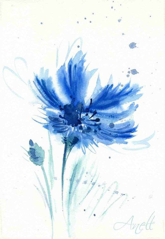 Blue Watercolor Flower Print Cornflower Watercolor Blue Print