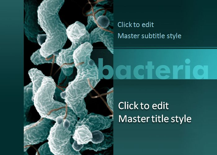 Bacteria powerpoint template templates pinterest template and bacteria powerpoint template toneelgroepblik Gallery