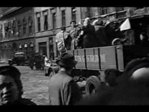 Hungarian Revolt 1956 VIDEO