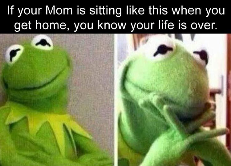 LOL! True! Enjoy RushWorld boards, LULU'S FUNHOUSE, UNPREDICTABLE WOMEN HAUTE COUTURE and MOOD BUSTERS FEEL BETTER NOW. Follow RUSHWORLD! We're on the hunt for everything you'll love! #Kermit #MadMom #Mothers