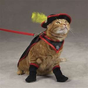 Puss in boots costume for cats