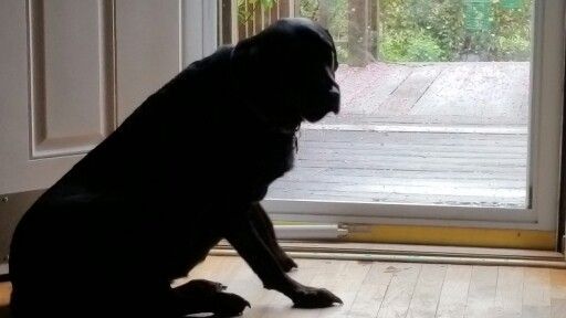 Did you say rain?