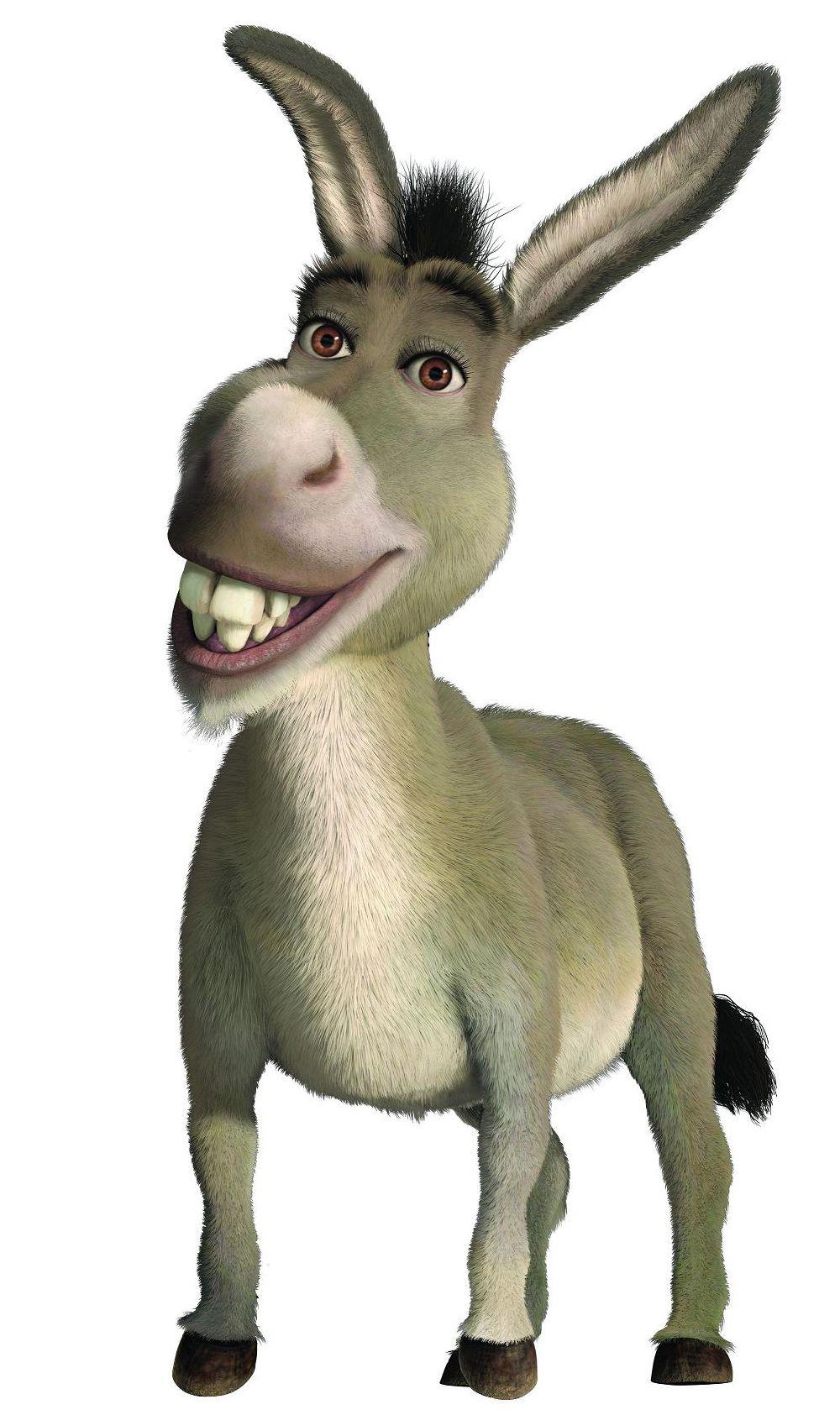 Donkey Species Shrek Donkey Shrek Character Shrek