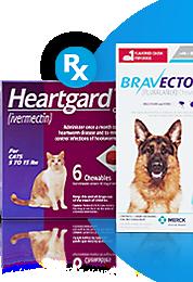 Pet Supplies Pet Food And Pet Products Petco Food Animals