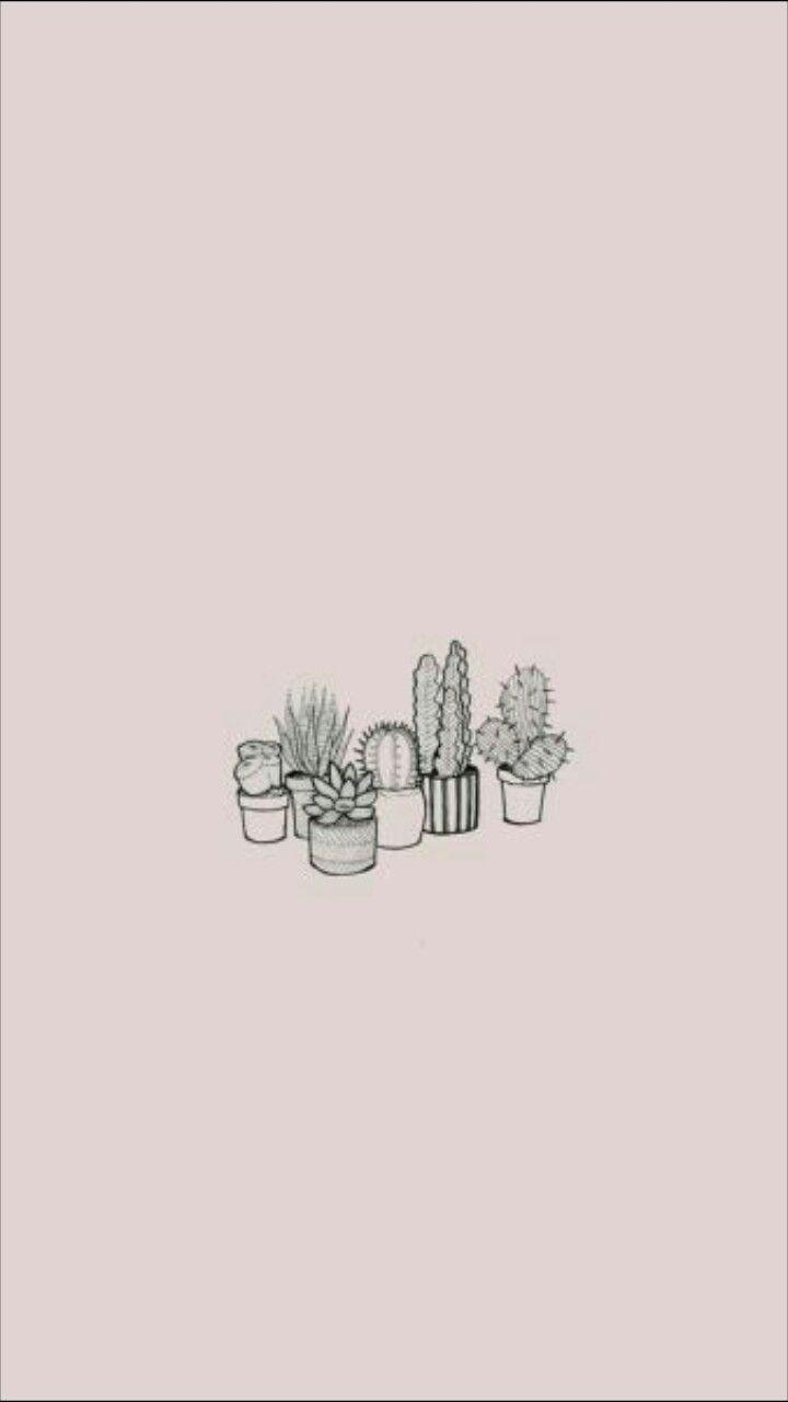 Cactus Fond Rose Pale Cute Simple Wallpapers Iphone Wallpaper Aesthetic Iphone Wallpaper