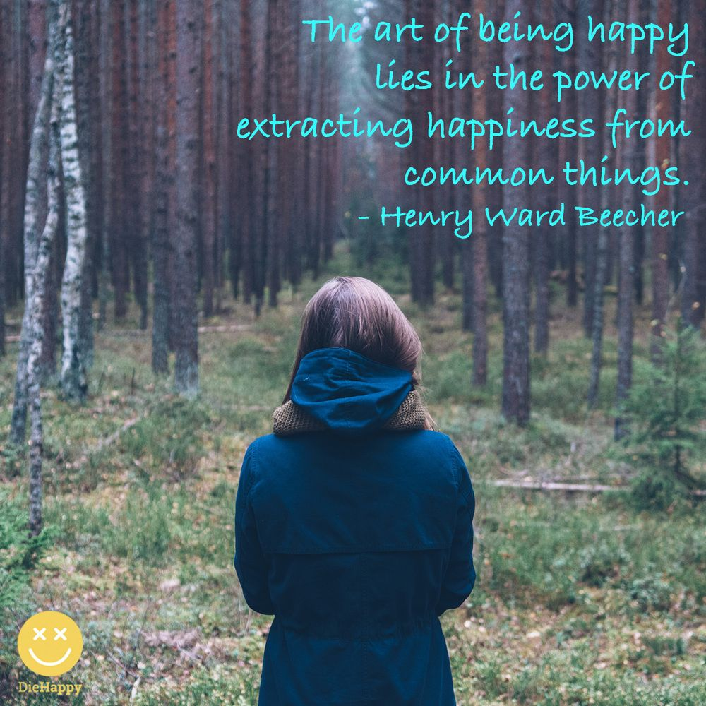 Art of being happy quote