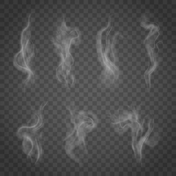 Set Of Isolated Smoke On A Transparent Background Vector Art Illustration Smoke Texture Vector Art Illustration Free Vector Art