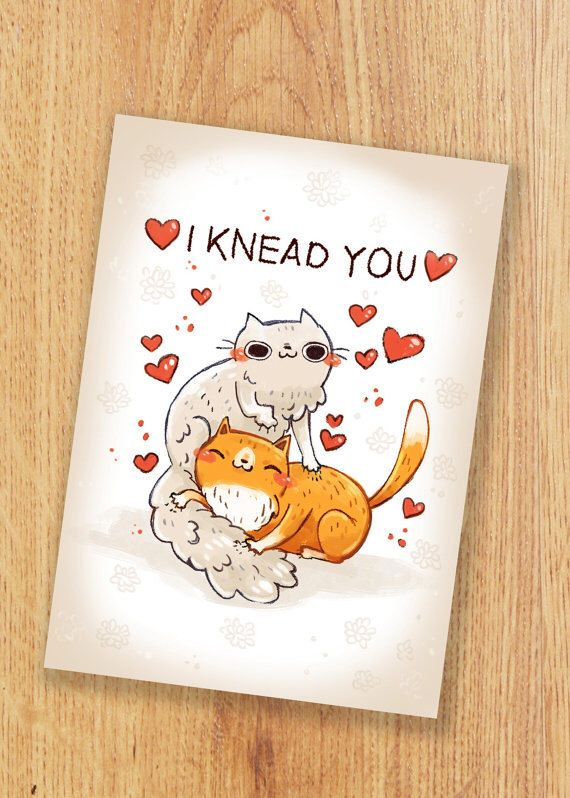 cat card anniversary valentines day card pun card by michiscribbles on etsy https - Etsy Valentines Day Cards