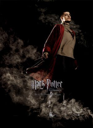 Harry Potter And The Goblet Of Fire Film Harry Potter Wiki Harry Potter Tumblr Harry Potter
