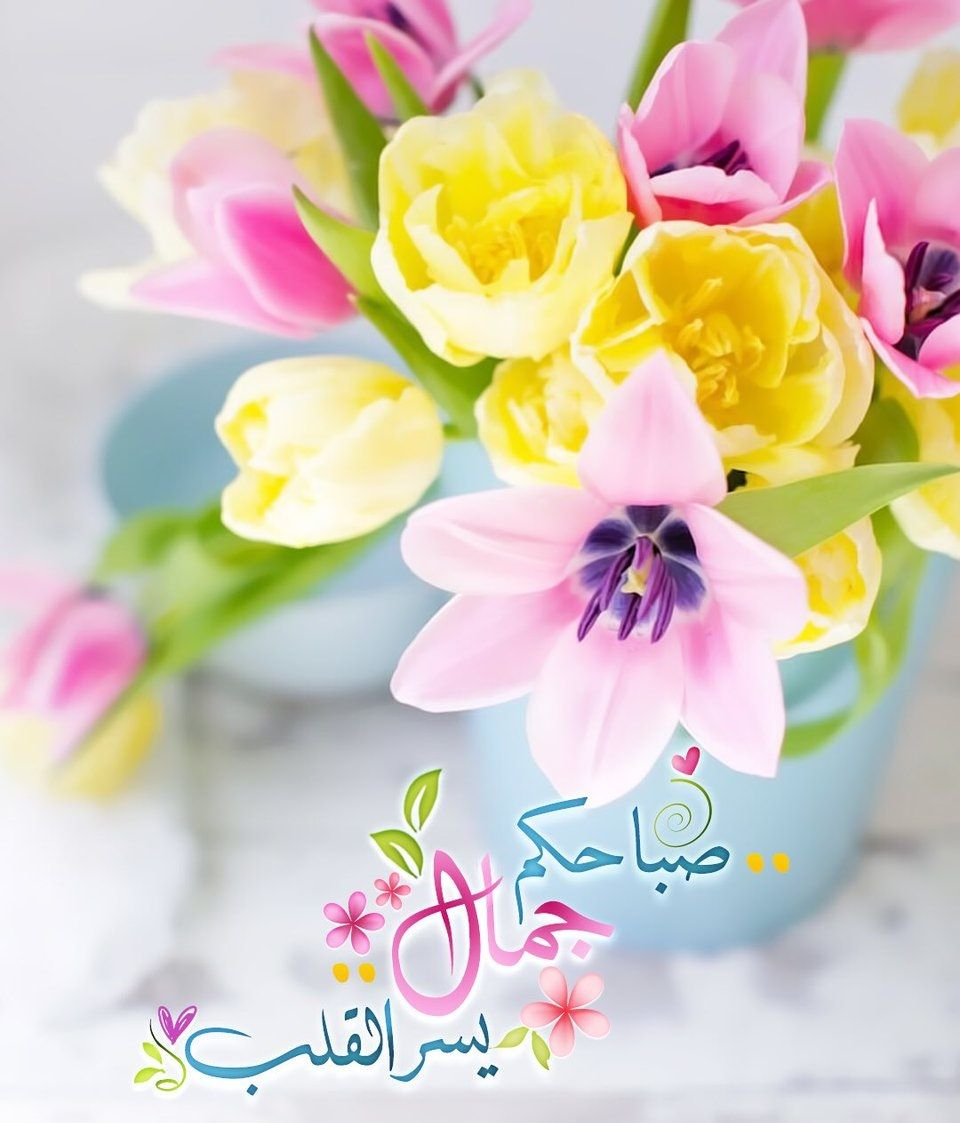 Pin By Nourelhouda On بطـاقـات صبـاحيـة واسـلاميـة Beautiful Morning Messages Hanging Flowers Good Morning Greetings