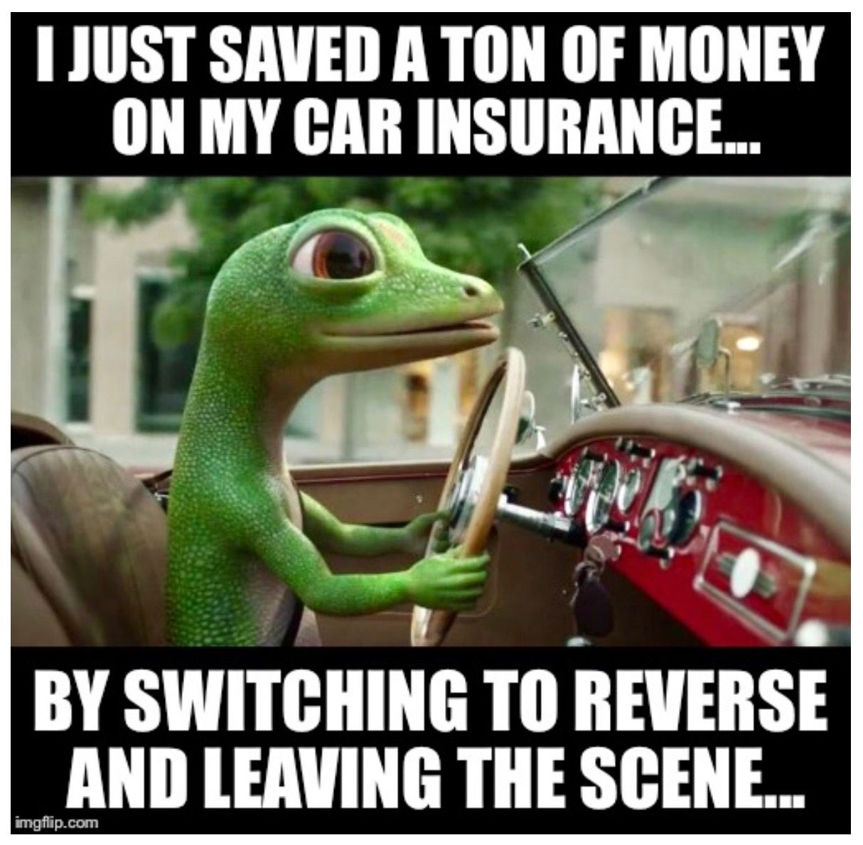 Geico Saved Quote: I Just Saved A Ton Of Money... On My Car Insurance