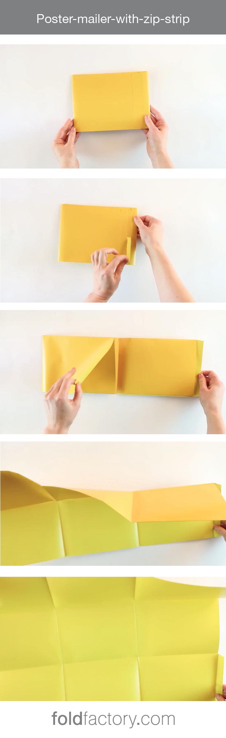 tri fold mailer template