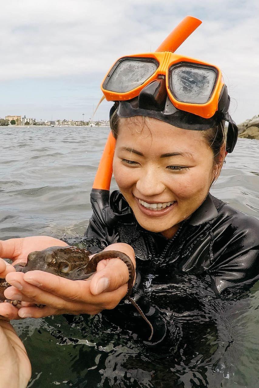 San Diego Marine Bio 101 Snorkel in Mission Bay!. I am a