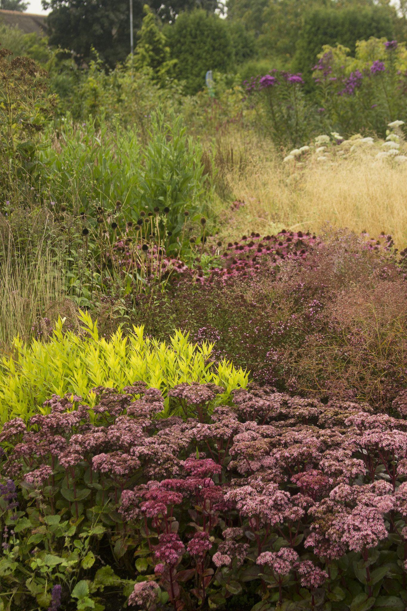 Vlinderhof119 | Gardens, Plants and Planting