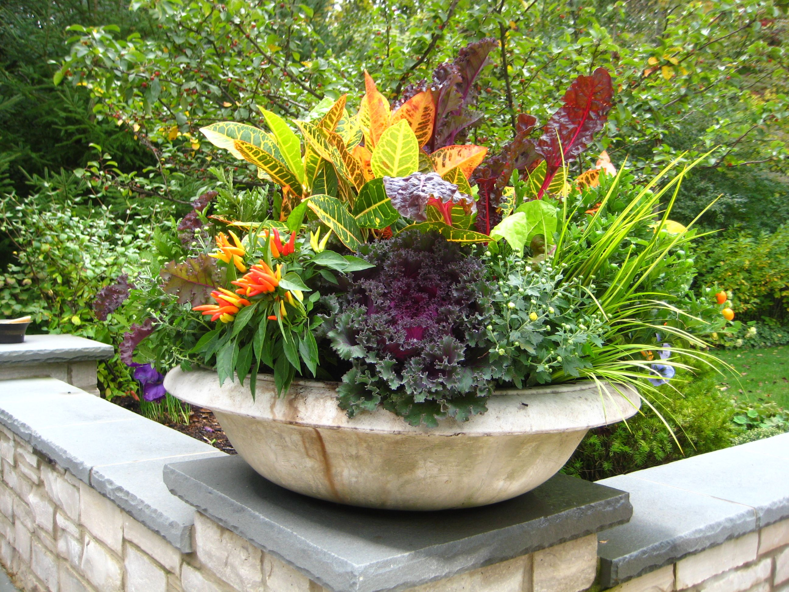 All the basics from designing a bsummerb bcontainerb still fall container flower ideas with photos yahoo search results izmirmasajfo Image collections