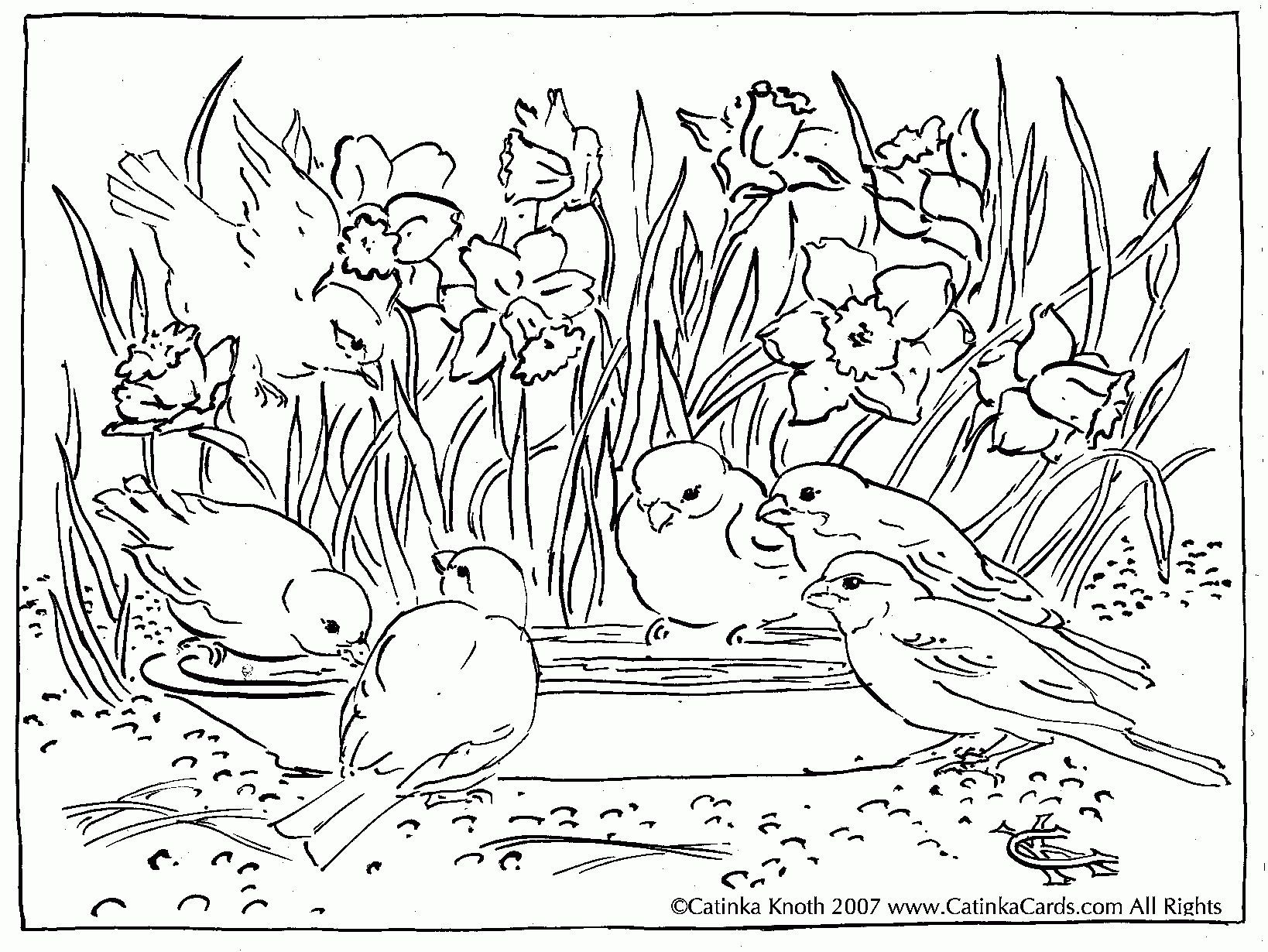 Pond Scene Coloring Page See More About Pond Scene Coloring Page