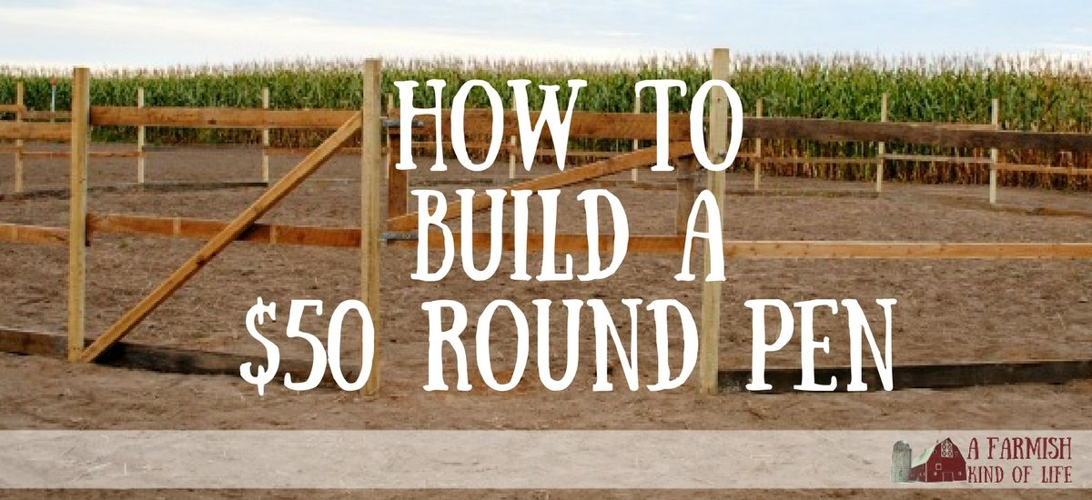 How to Build a Round Pen for Next to Nothing | Round pen ...