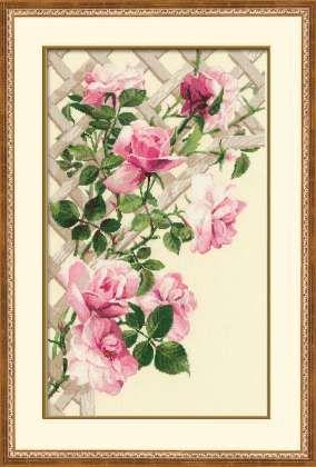 Pink Roses on Lattice