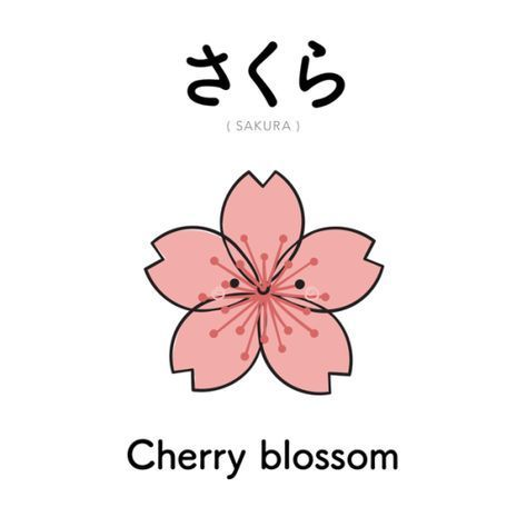 Pin By Riice Wiife On Learn Japanese Language Japanese Language Learn Japanese Words Japanese Language Learning