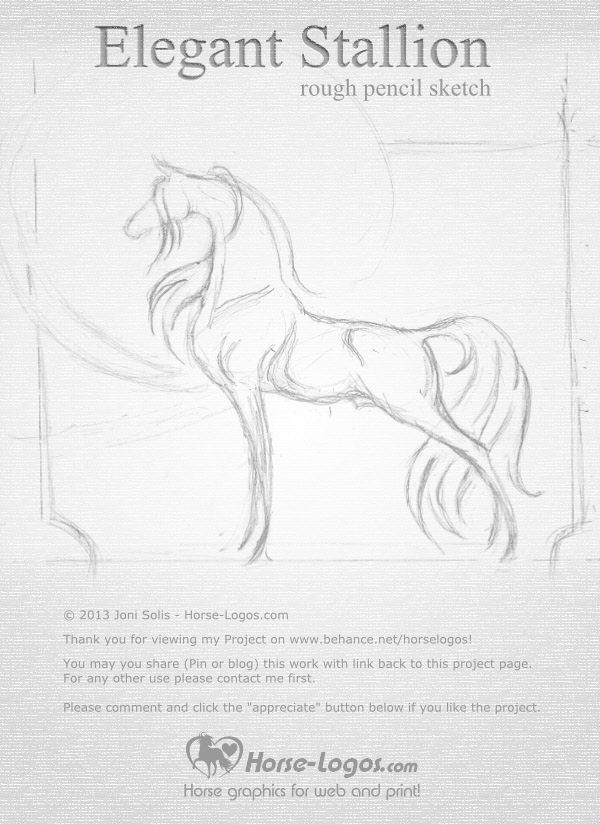 Rough pencil sketch of and Arabian horse stallion. Finished ...