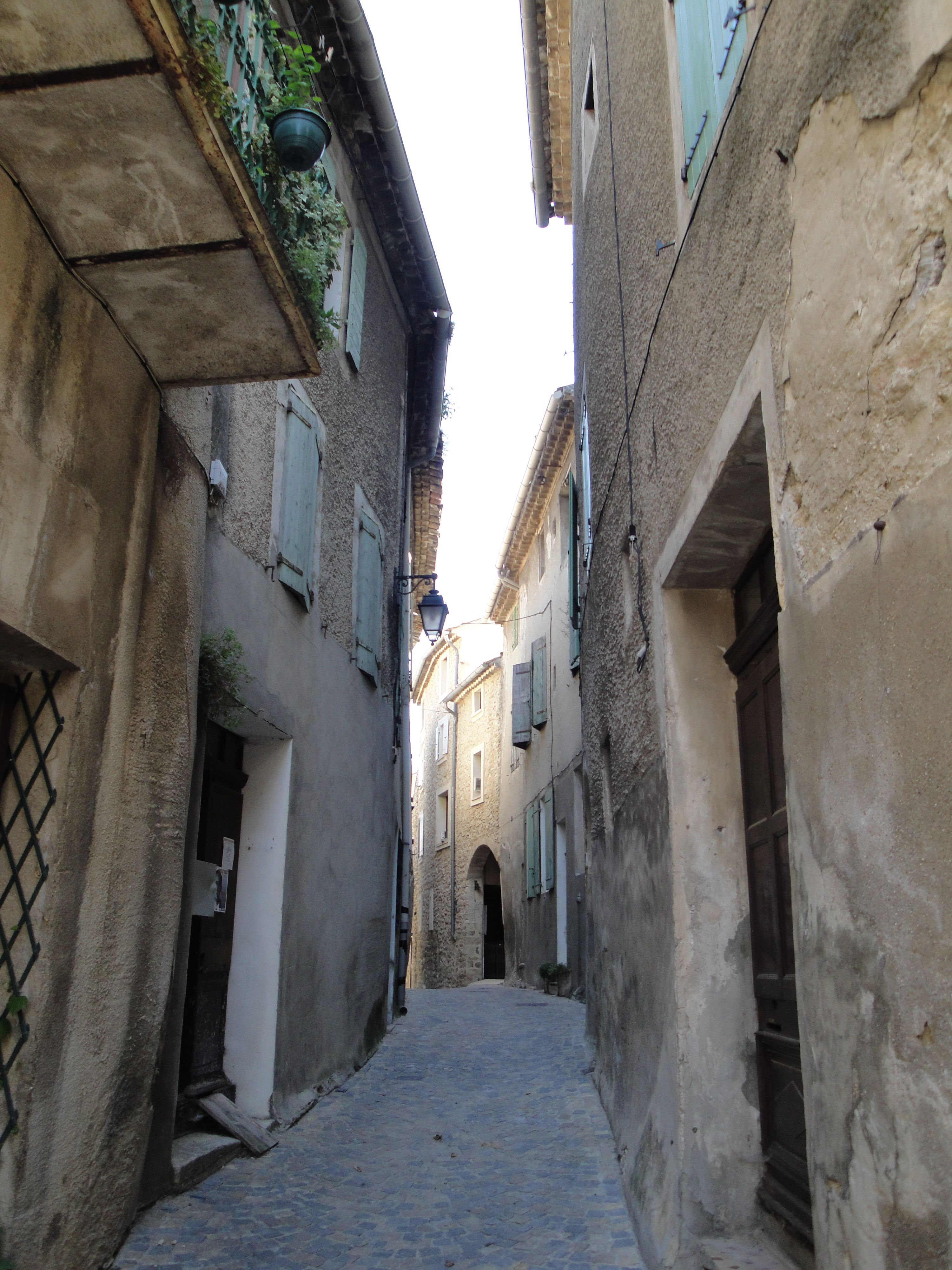 The street where we stayed for a few days in Mollans-sur-Oveze, France