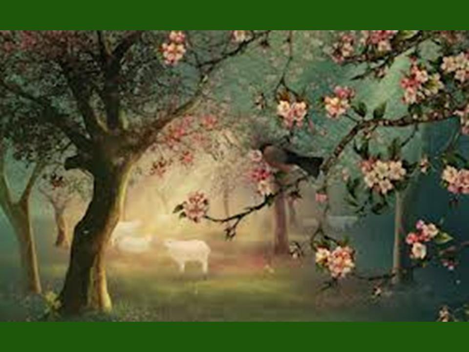 Spring Jacquie Lawson Art Jacquie Lawson E Cards