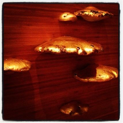 One of my favorite pieces of art: gold mushrooms growing from my dining room wall. And yes, those are real mushrooms!