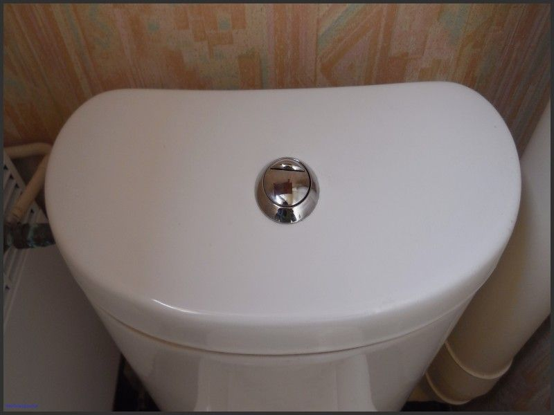 Inspirational Home Depot Glacier Bay Toilet Reviews