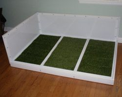 Doggy Solutions Dog Litter Boxes Are Not Just Apartment Dog Potty - Indoor dog bathroom solutions