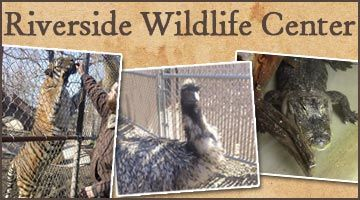 Get 50% off a Wildlife Tour at the Riverside Wildlife Center!
