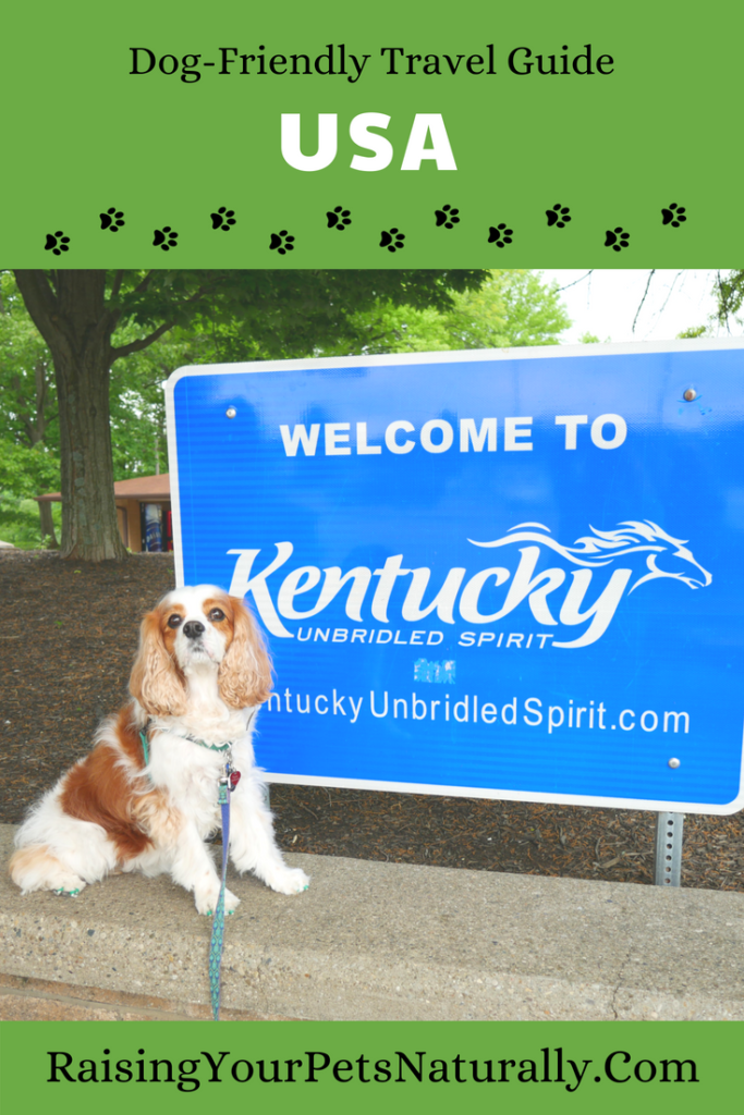 Lucky Dog Pet Lodge Reviews