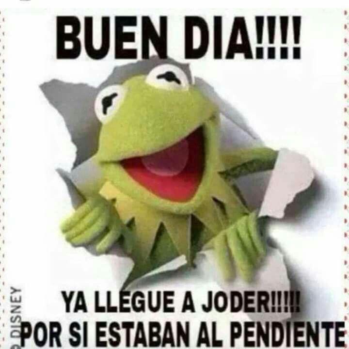 Ya Llegue Memes De Buenos Dias Saludos De Buenos Dias Imagenes Graciosas Frases