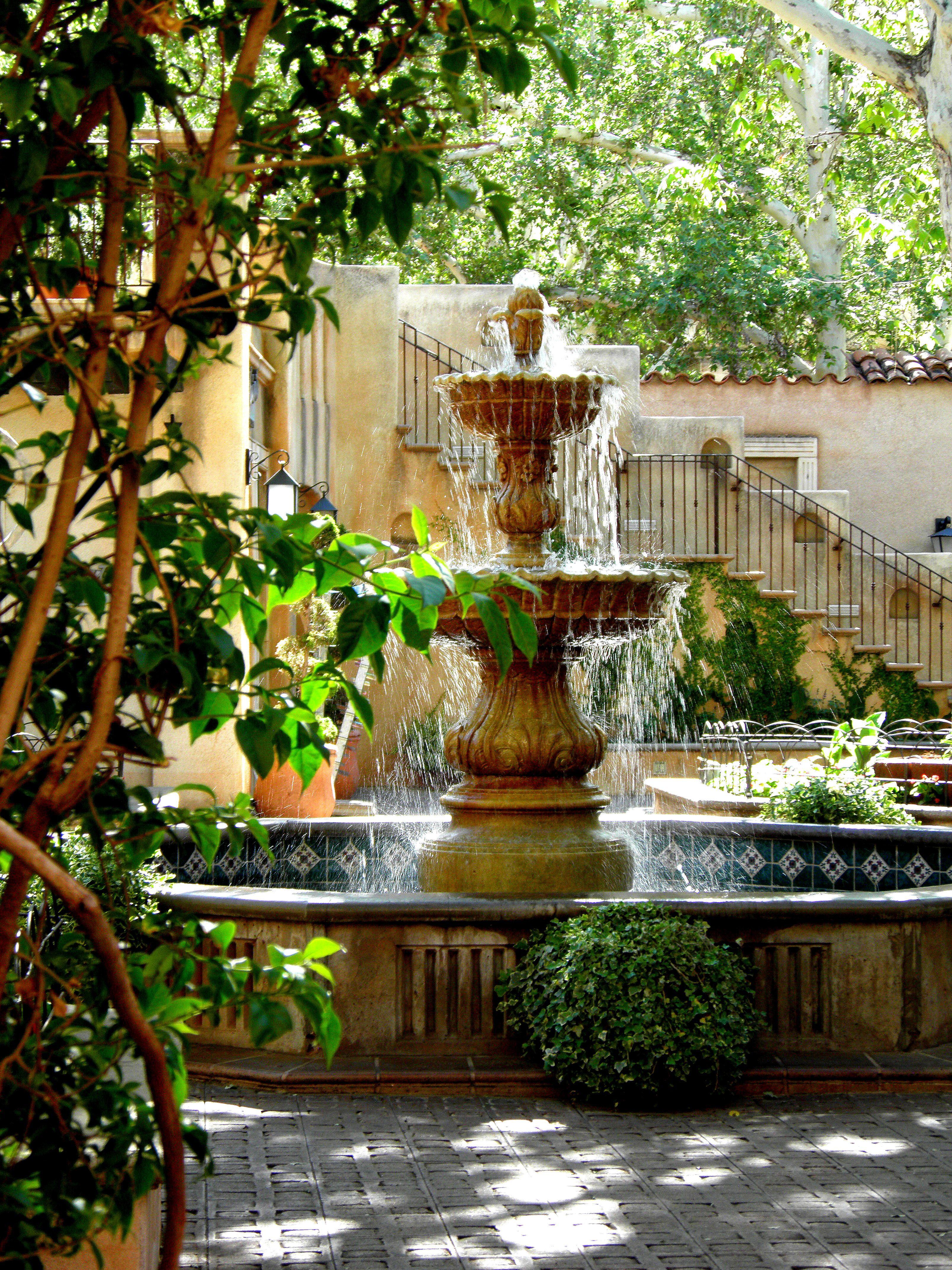 Tropical Courtyard Garden Lush