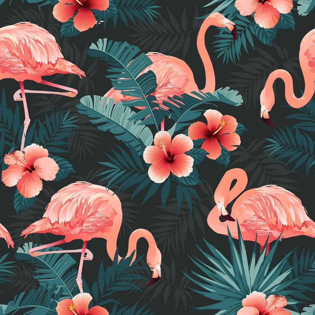 Angelina Bambina On Instagram Tropical Birds And Flowers Flamingo Background Surface Flamingo Wallpaper Floral Wallpaper Iphone Wallpaper Tumblr Aesthetic