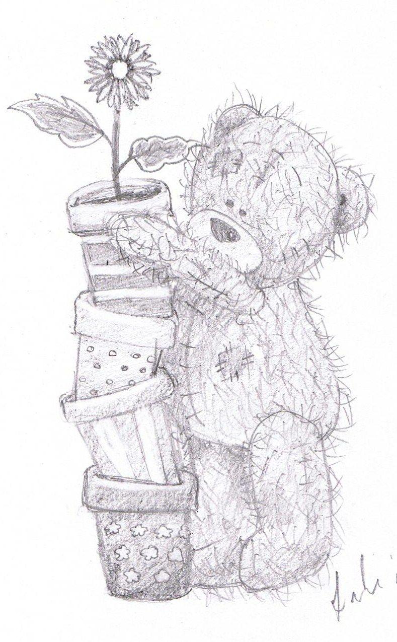 plant pots  Tatty teddy, Teddy bear drawing, Teddy bear