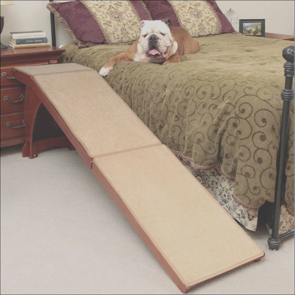 14 dog stairs to sofa photos in 2020 dog stairs