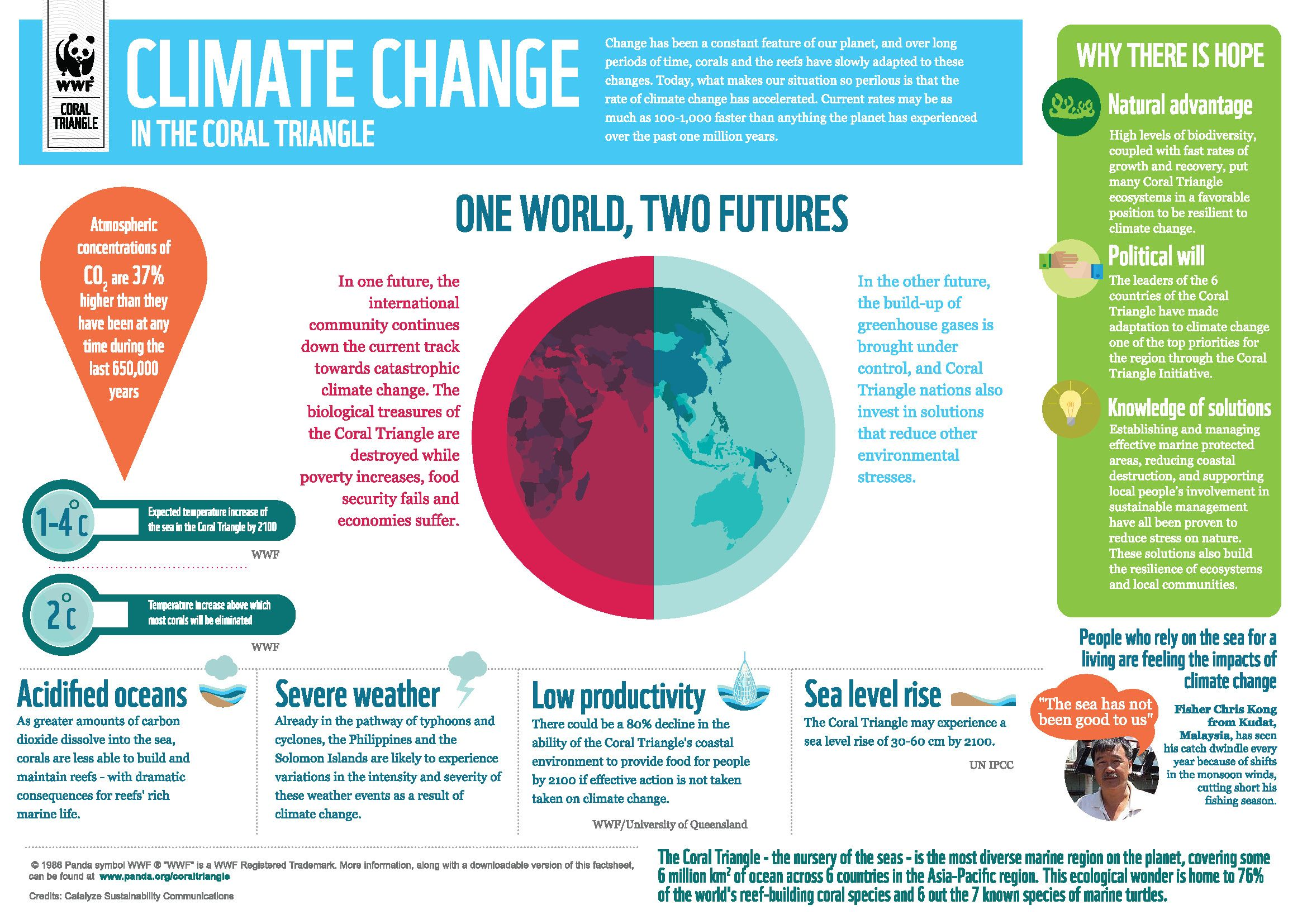 Infographic Climate Change In The Coral Triangle Climate Change Infographic Climate Change Global Warming