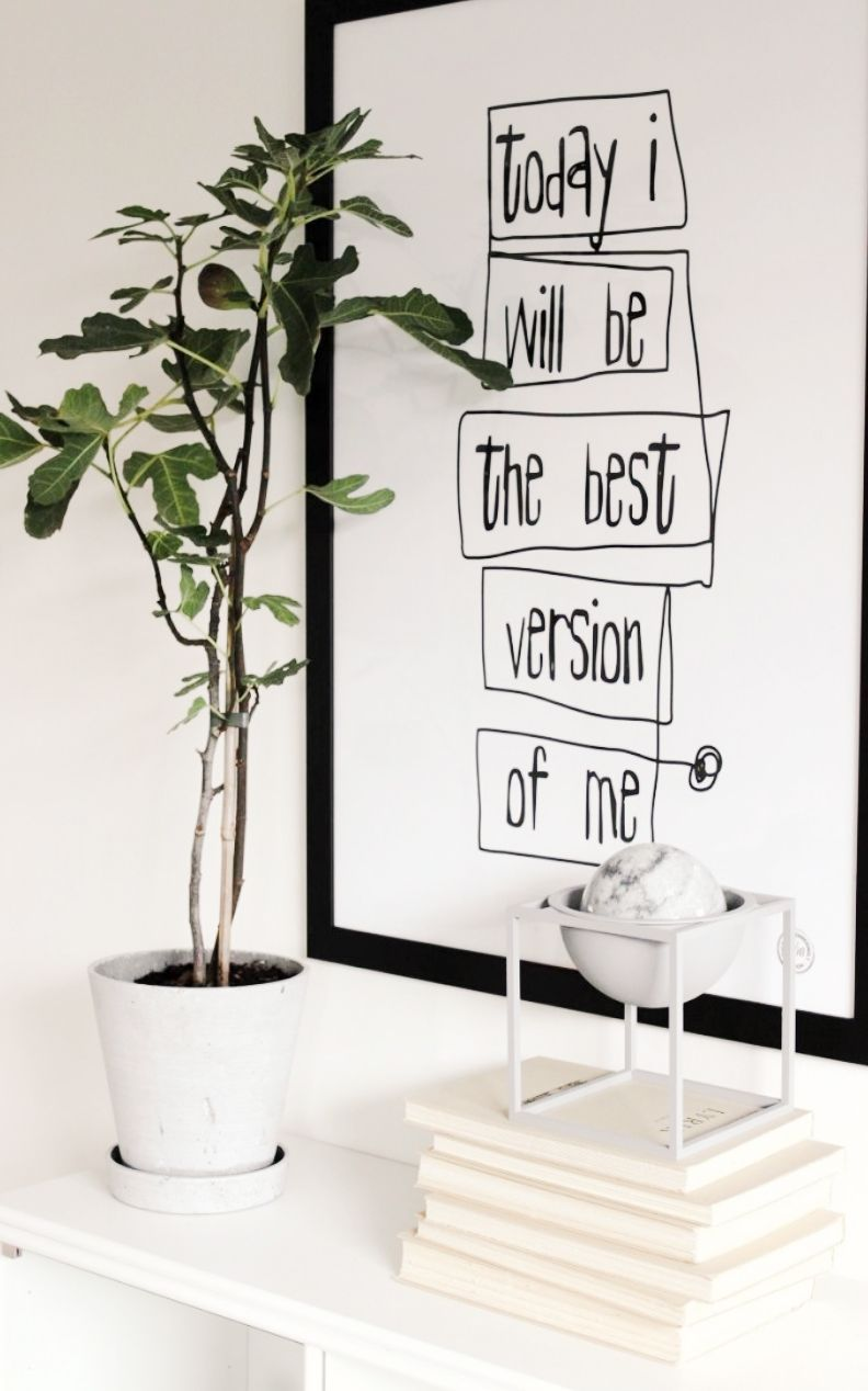 White walls green plant white accents and black white worded wall