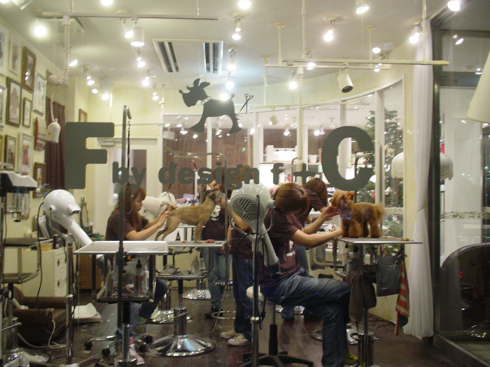 Bento Dog Grooming Salons Dog Grooming Shop Grooming Shop