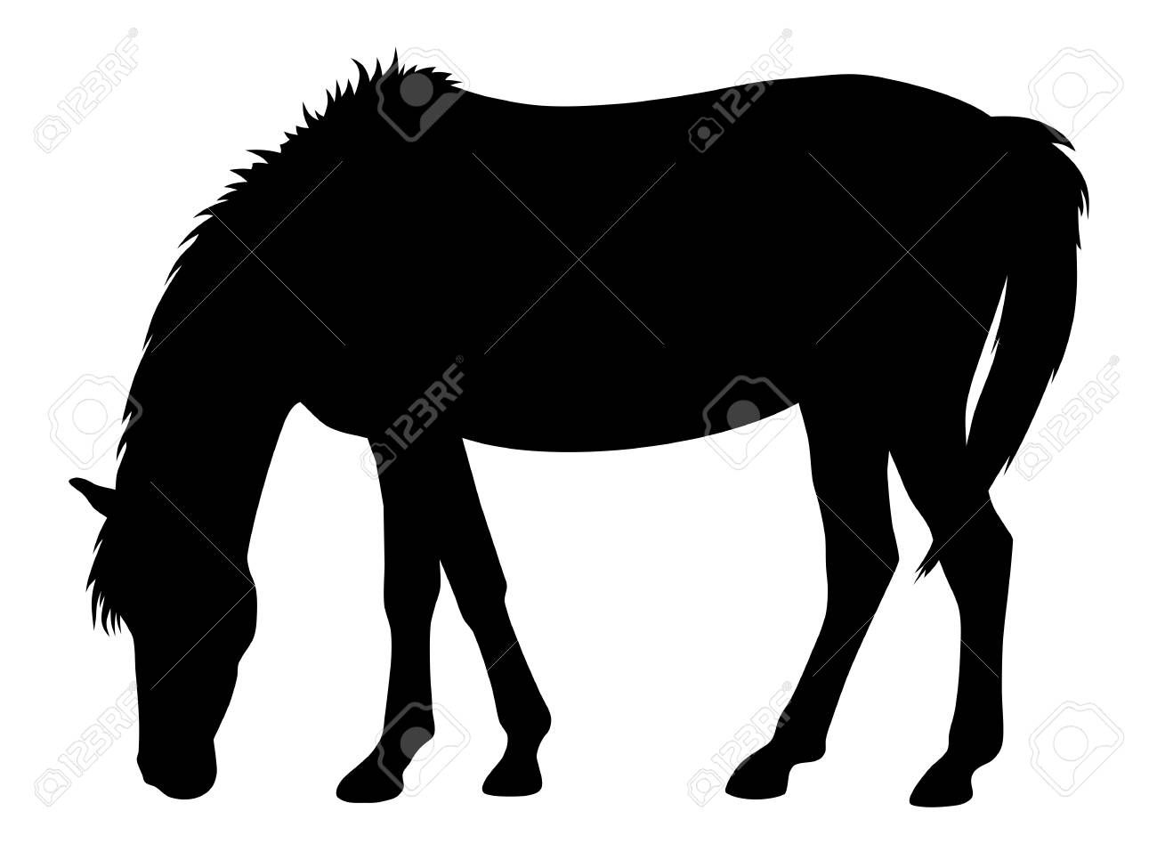 Vector Illustration Of Horse Silhouette Affiliate Illustration Vector Silhouette Horse Horse Silhouette Vector Illustration Horses
