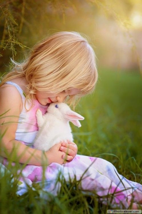 loveliegreenie  beautiful little blonde girl in pastel floral spring dress kissing a blue-eyed pink-nosed white bunny