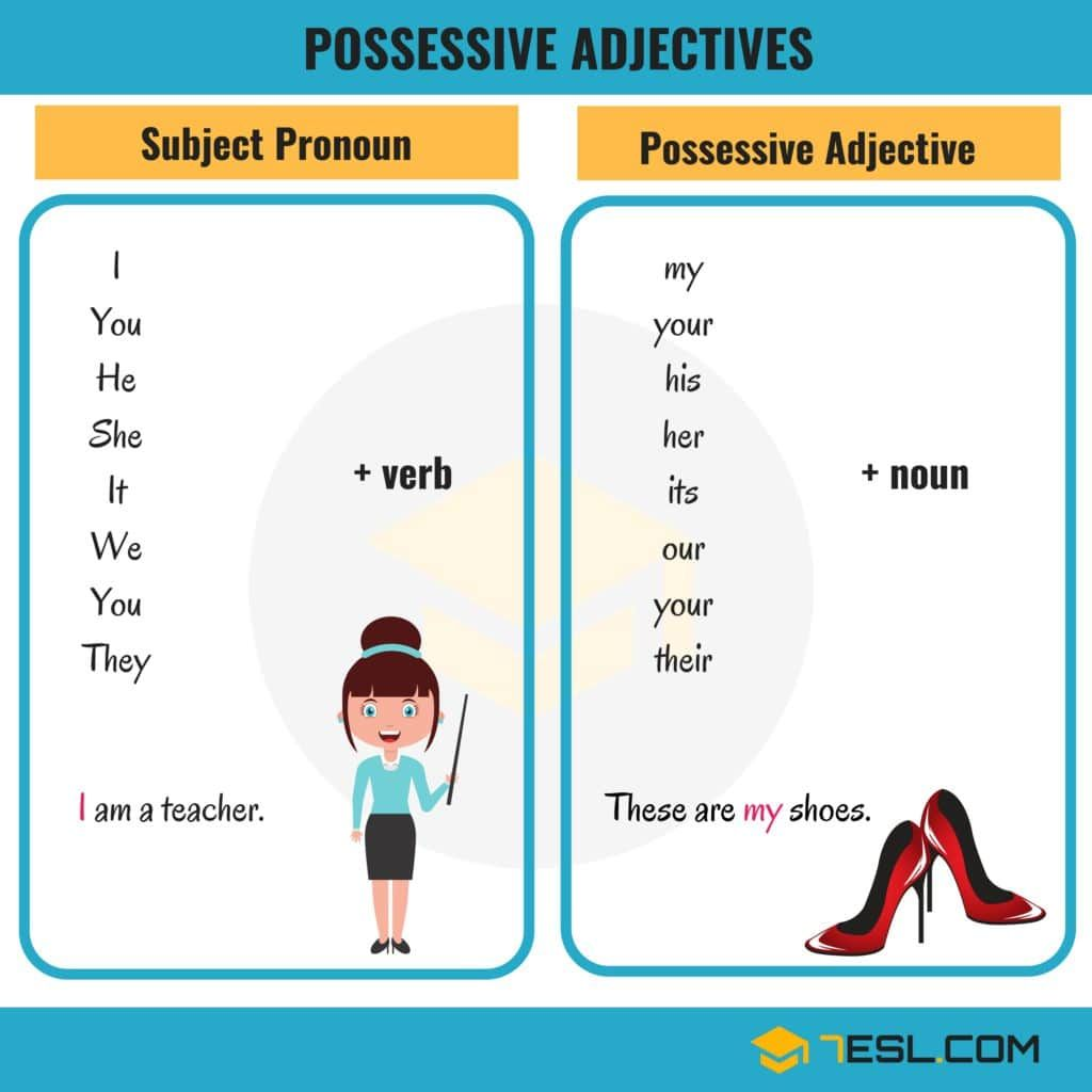 Possessive Adjectives Amp Subject Pronouns In English